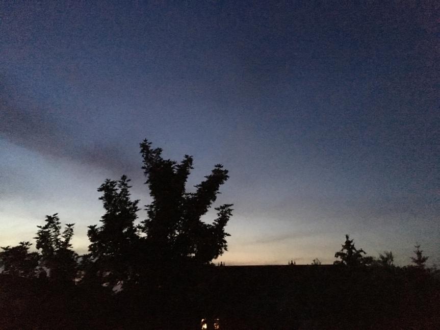ドイツ, 夏, 明るい夜, 北ドイツ, ロストック, 夜